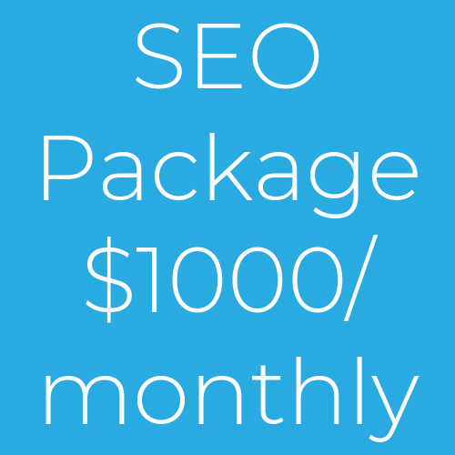 Monthly SEO Package 1000