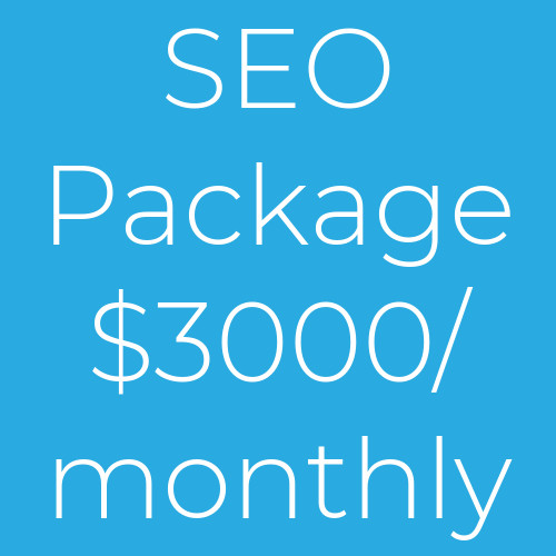 Monthly SEO Package 3000